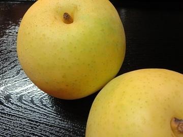 美味しい二十世紀梨が鳥取から届きました