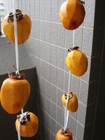 干し柿.JPG