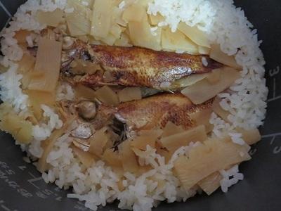【鳥取土産】炙りのどぐろ姿めしの素|鳥取・米子土産で作る美味しい炊き込みご飯