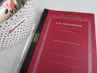 アピカ・紳士なノート・Premium CDノート.JPG