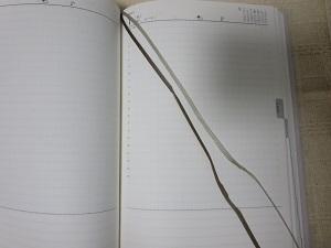 高橋書店torinco1.JPG