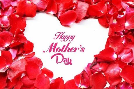母の日のプレゼント5選|介護・見守りが必要なお母さんへのプレゼントはどんなものがいい?