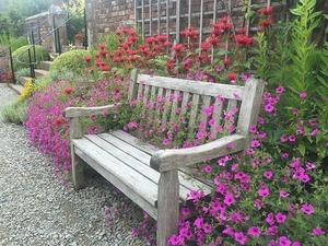 bench-997715_640.jpg