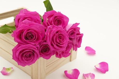 bouquet-3158355_640.jpg