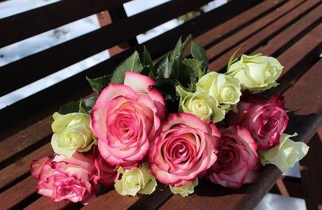 敬老の日の贈り物におすすめ5選!|おめでたいプレゼントで長寿のお祝いを