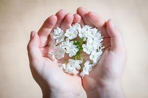 flower-1307578_640.jpg