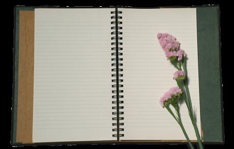 handbook-3205551_640.png