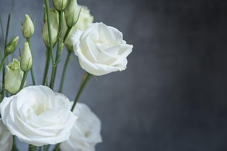 【日比谷花壇】で友人宅にお悔やみのお花を贈る