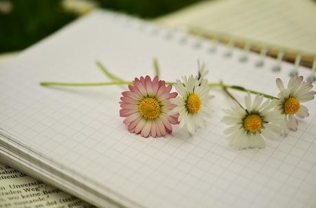 notebook-1405303_640.jpg