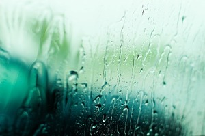 rain-1640546_640.jpg