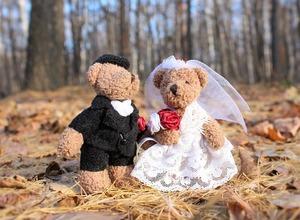 wedding-1034430_640.jpg