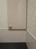 トイレ・パネルと収納.JPG