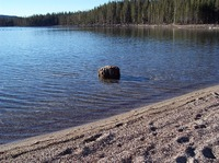 lake-2298493_640.jpg