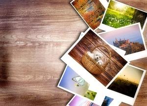photos-1167847_640.jpg